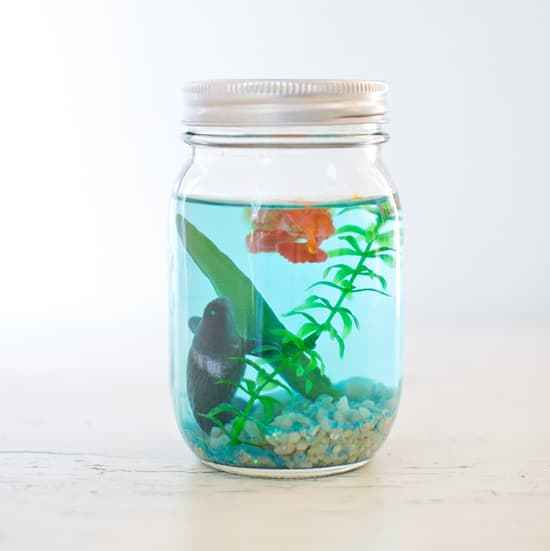 Make a mason jar aquarium for Crafts to make with glass jars