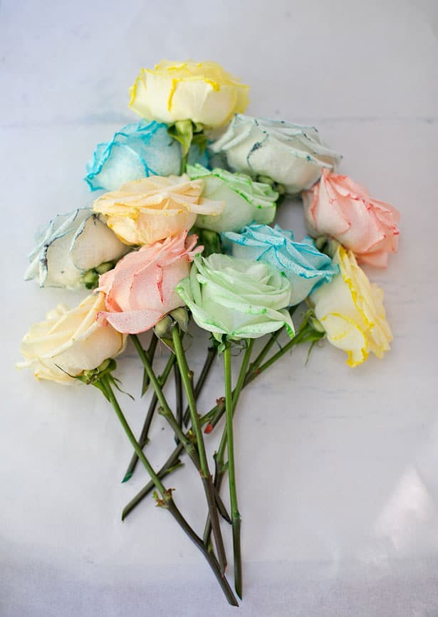 How to dye rainbow flowers this fun science experiment resulted in such gorgeous pastel flowers that almost remind me of pretty tissue paper flowers my kids ages 5 and 3 had so mightylinksfo