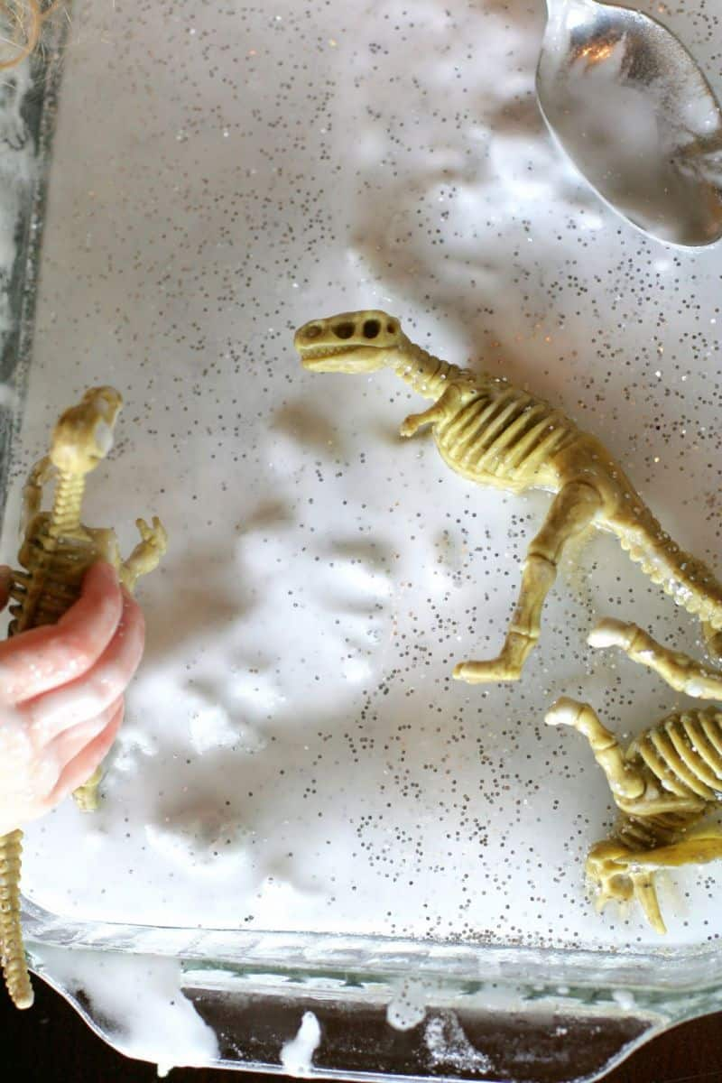What can you learn from frozen fossils