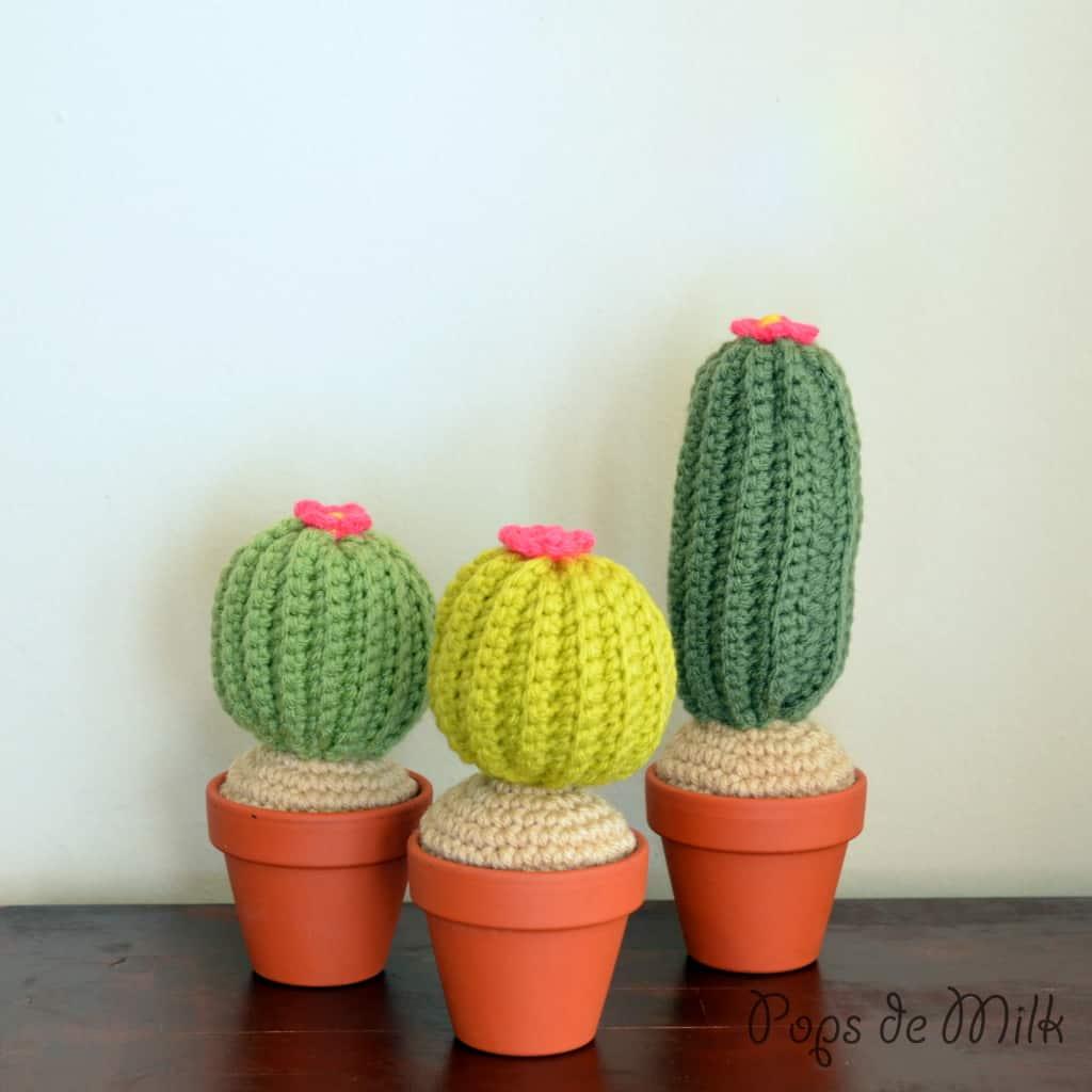 10 Creative And Cute Cactus Crafts