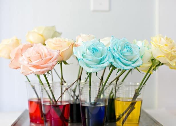how to dye rainbow flowers