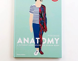 ANATOMY BOOK WITH BEAUTIFUL PAPER CUT OUTS