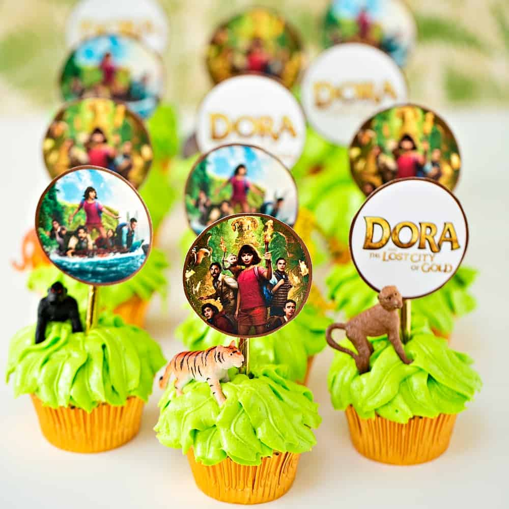 DORA AND THE LOST CITY OF GOLD JUNGLE CUPCAKES - Hello