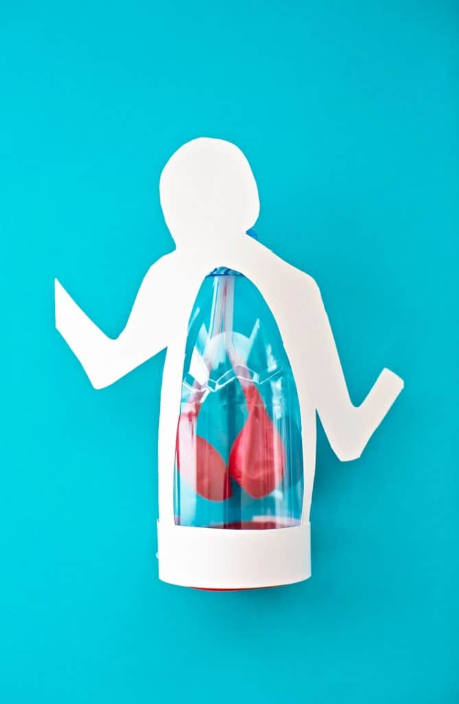 Lung Anatomy in a Bottle Activity for Kids from Maker Lab