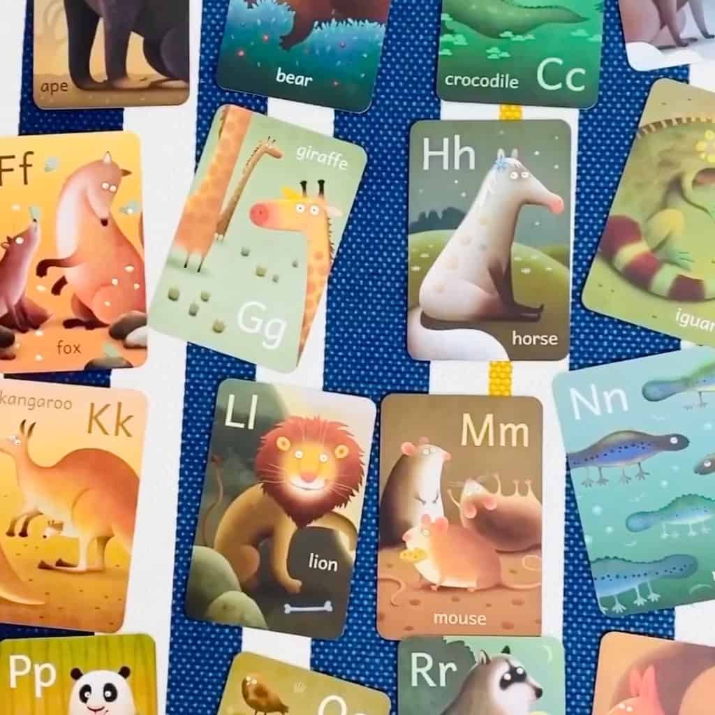Tiny Worlds Flash Cards