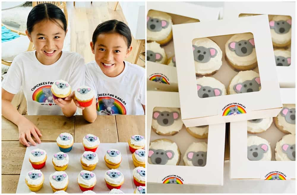 Cupcakes For Koalas was started by two young passionate kid bakers to raise money for the Australian Fires.