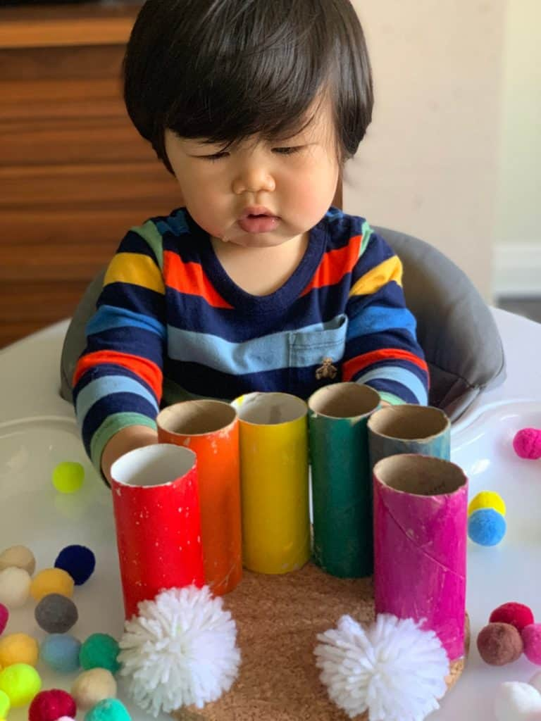 Toilet Paper Tube Rainbow Pom Pom Drop Toddler Fine Motor Skills Activity