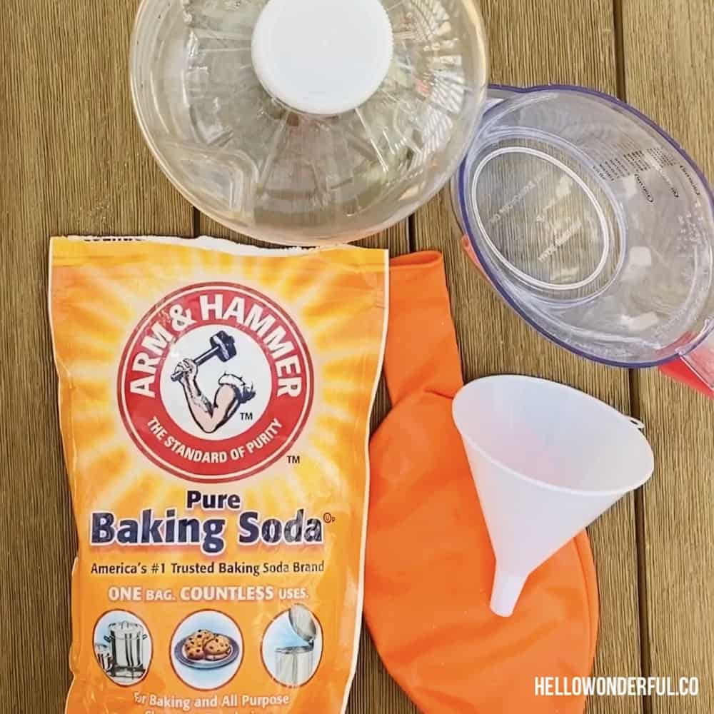 Materials for baking soda vinegar balloon experiment