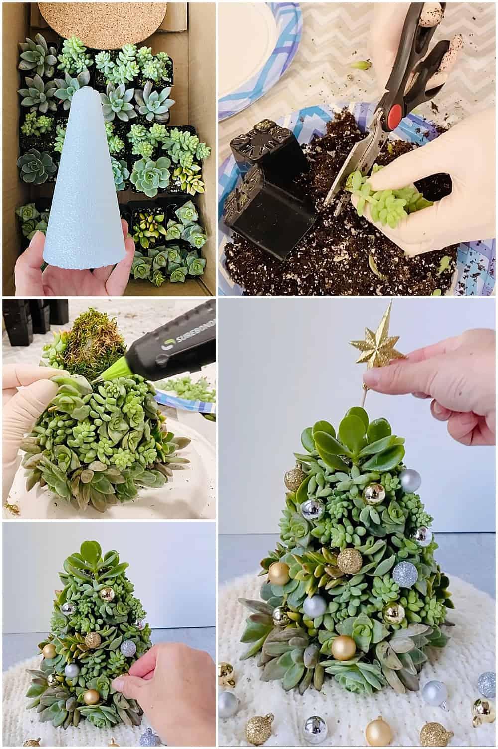 succulent diy christmas tree
