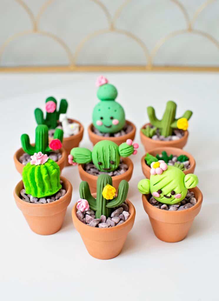 cactus clay craft