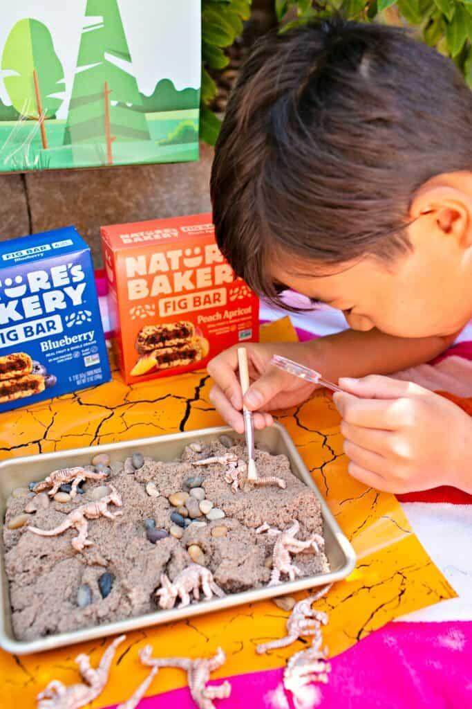 Nature's Bakery Jurassic Kit